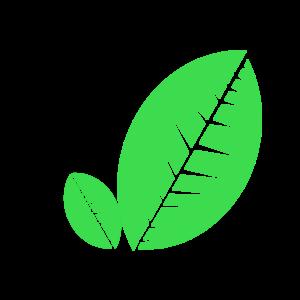 Heizpilz umweltfreundlich